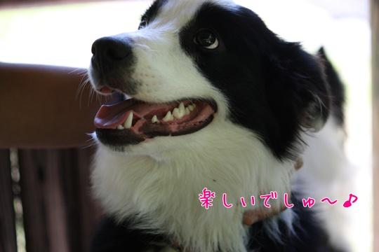 2010718191川10