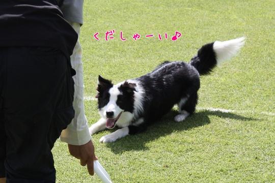 2010724え