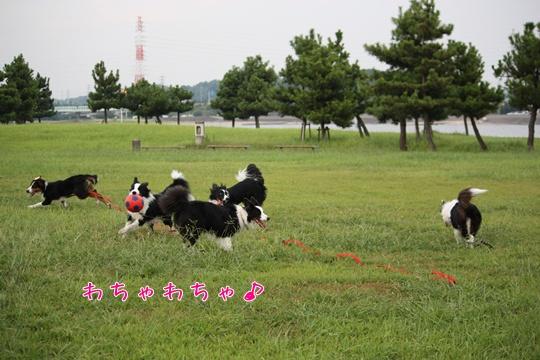 20100912こ