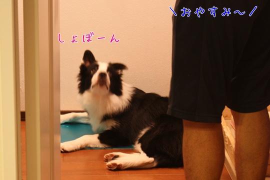 20100916く