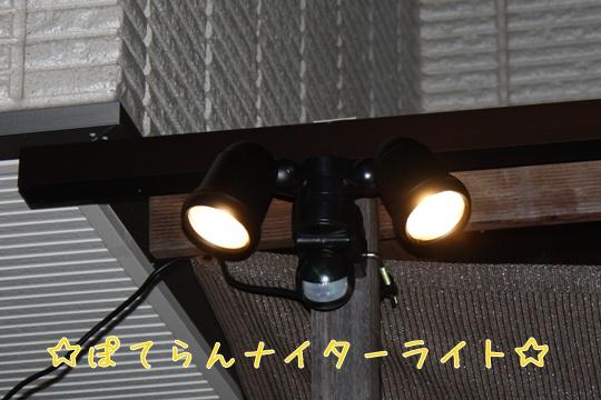 20100925r