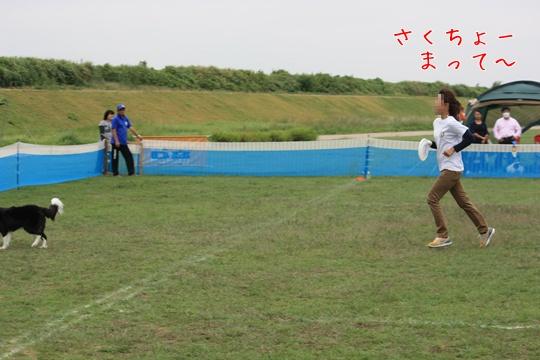 2010231う