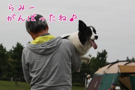20101023241う