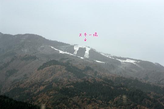 201011131.jpg