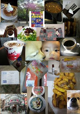 2010ブログ最終