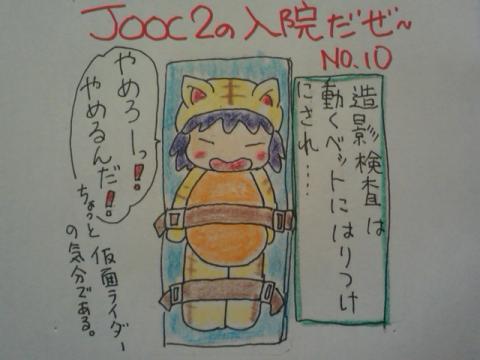 AA11_convert_20101127135303.jpg