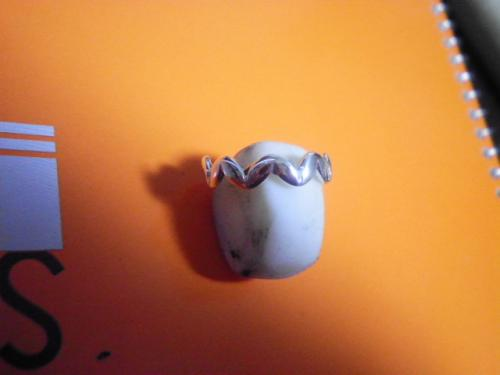 SANY0442_convert_20110117160059.jpg