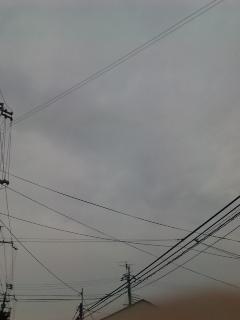 20091110123908