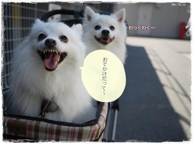 48_20110714200836.jpg