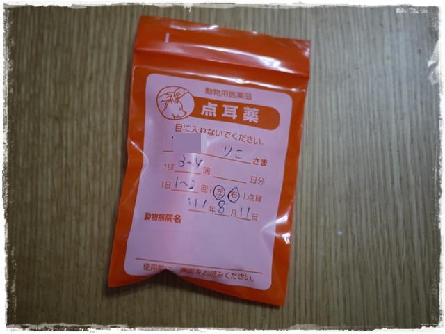 78_20110812164915.jpg