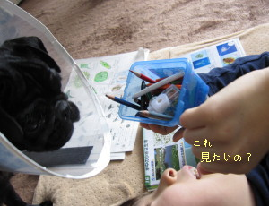 IMG_20100405__04.jpg