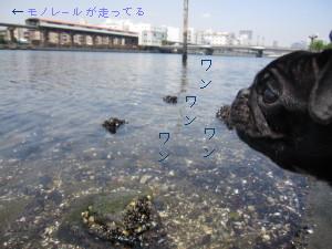 IMG_20100505__05.jpg