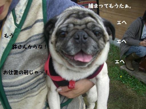 CIMG5720.jpg