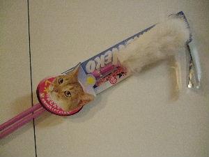 じゃれ猫1669