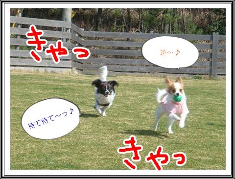 DSC07368.jpg