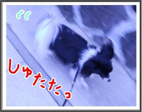 DSCN0117.jpg