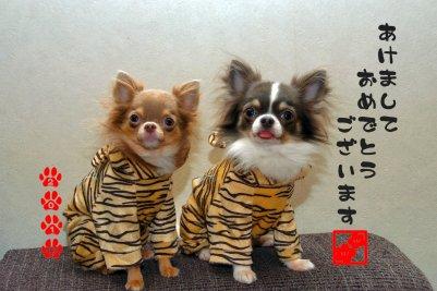 コピー ~ nenga2010part3