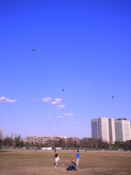 二日 快晴 公園