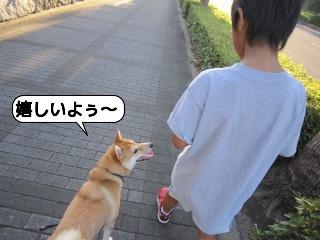 くうちゃん0718 044