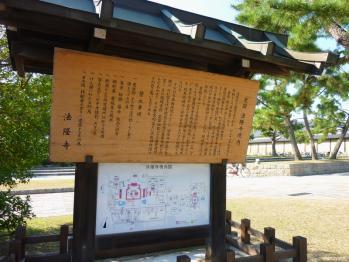 20101108_6.jpg
