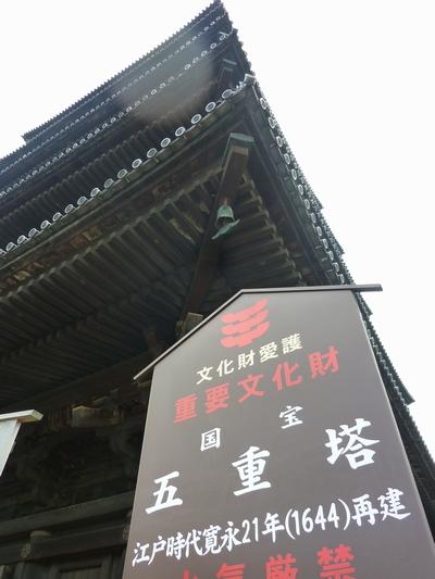 20101110_8.jpg