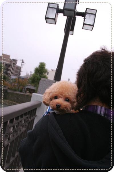 20101117_71.jpg
