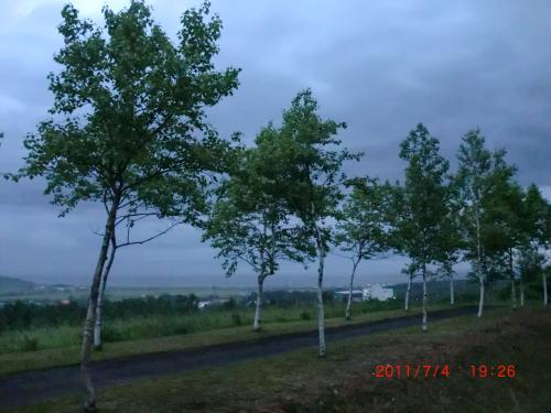 CIMG4560_convert_20110704224158.jpg