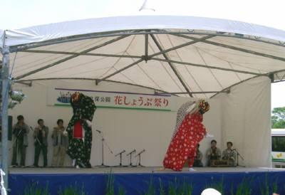 花しょうぶ祭り2