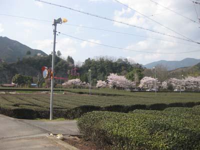 04_リバーサイド茶倉