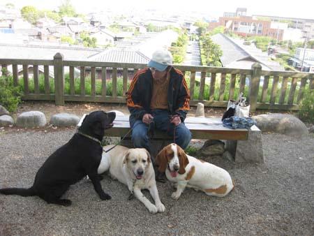 06松阪城公園