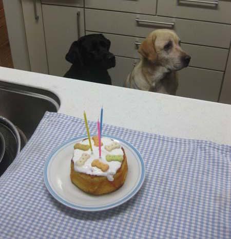 05_ケーキ
