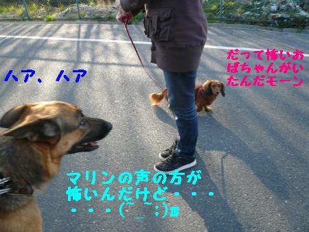 繝ゥ繧、繧「繝ェ繧ケ・「3+436_convert_20100126173813