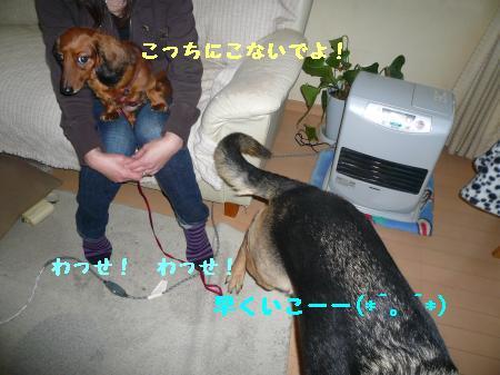 繝ゥ繧、繧「繝ェ繧ケ・「3+423_convert_20100126172916