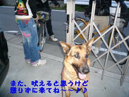 繝ゥ繧、繧「繝ェ繧ケB4+211_convert_20100402233646
