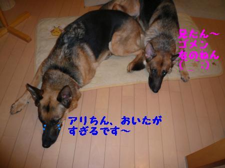 譁ー縺励>+003_convert_20101001152906