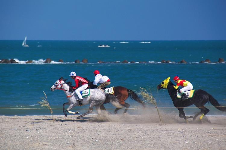 相良競馬 2010