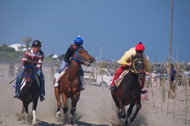 相良競馬 2010 その2
