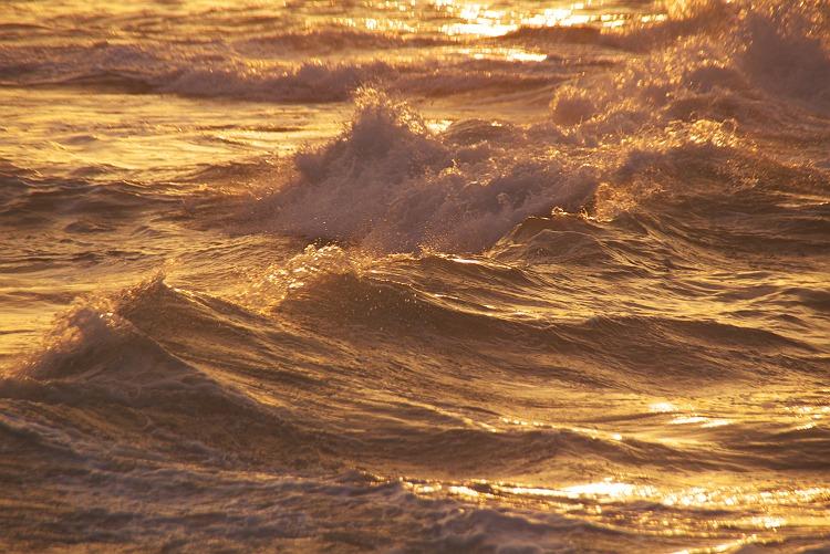 海で見掛けた風景