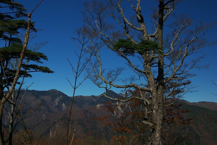 大札山の紅葉 2009