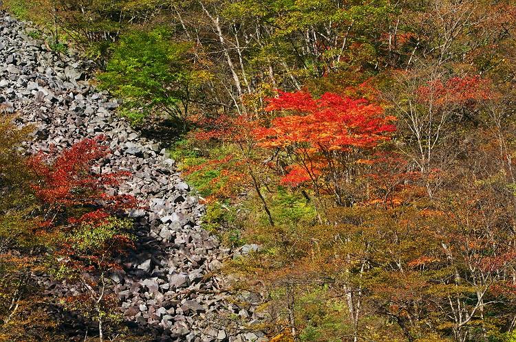 秋染まる大谷崩 3