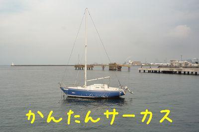 23-12-15a.jpg
