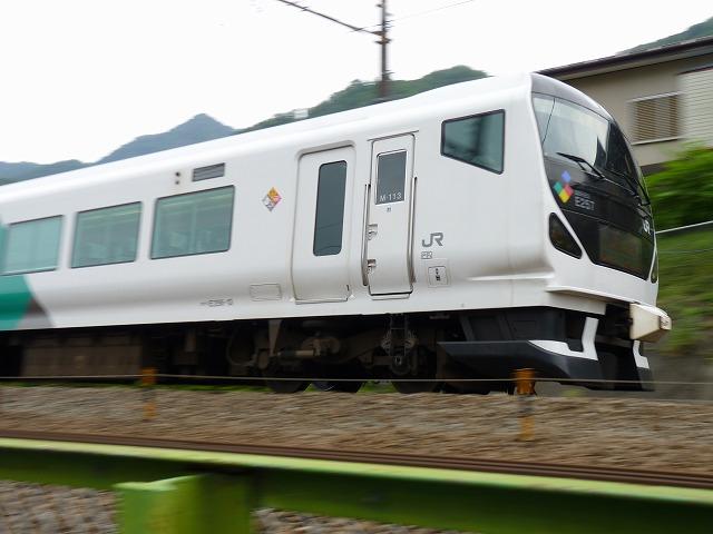 P1180755.jpg