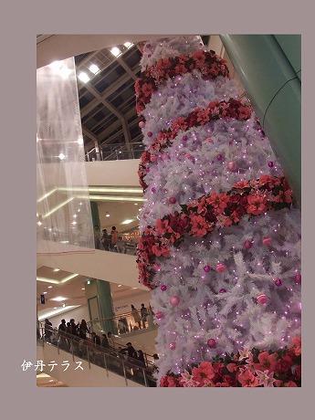 2009-11-29-01.jpg