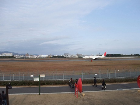 2009-11-29-14.jpg