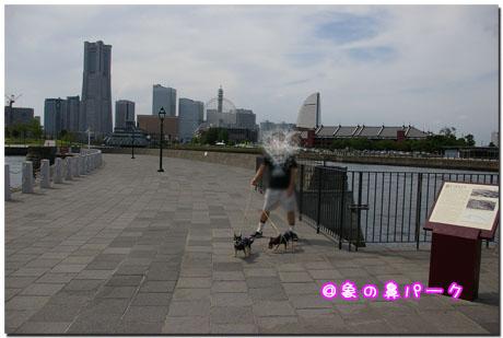 横浜ぷらぷら散歩道。3