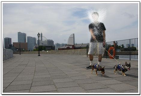 横浜ぷらぷら散歩道。4