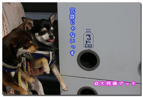 横浜ぷらぷら散歩道。5