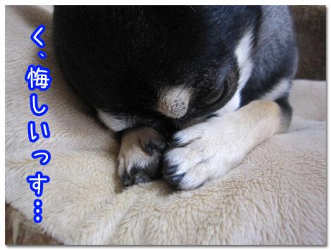 エスプリ『チョー気持ちいいッ!』2