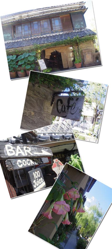 ワンコと伊豆旅行 下田でランチ&お散歩編 【cafe cubstar】10