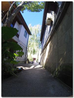 ワンコと伊豆旅行 下田でランチ&お散歩編 【cafe cubstar】11